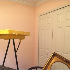 Demure Pink Paint